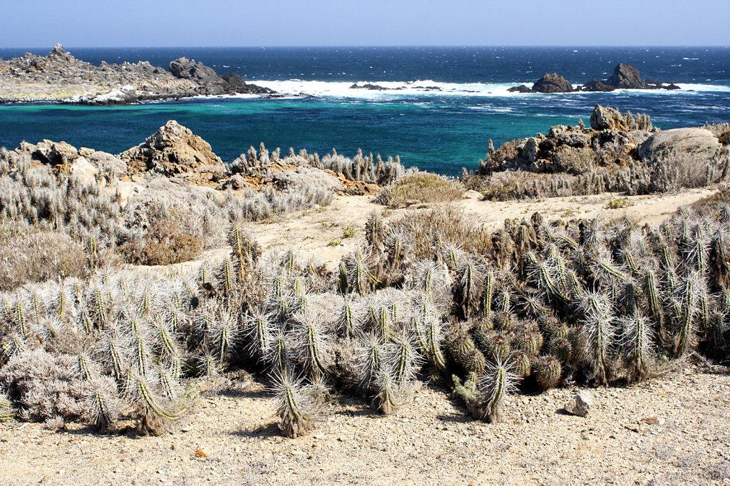3. Chili Noord - Kust van de Stille Oceaan